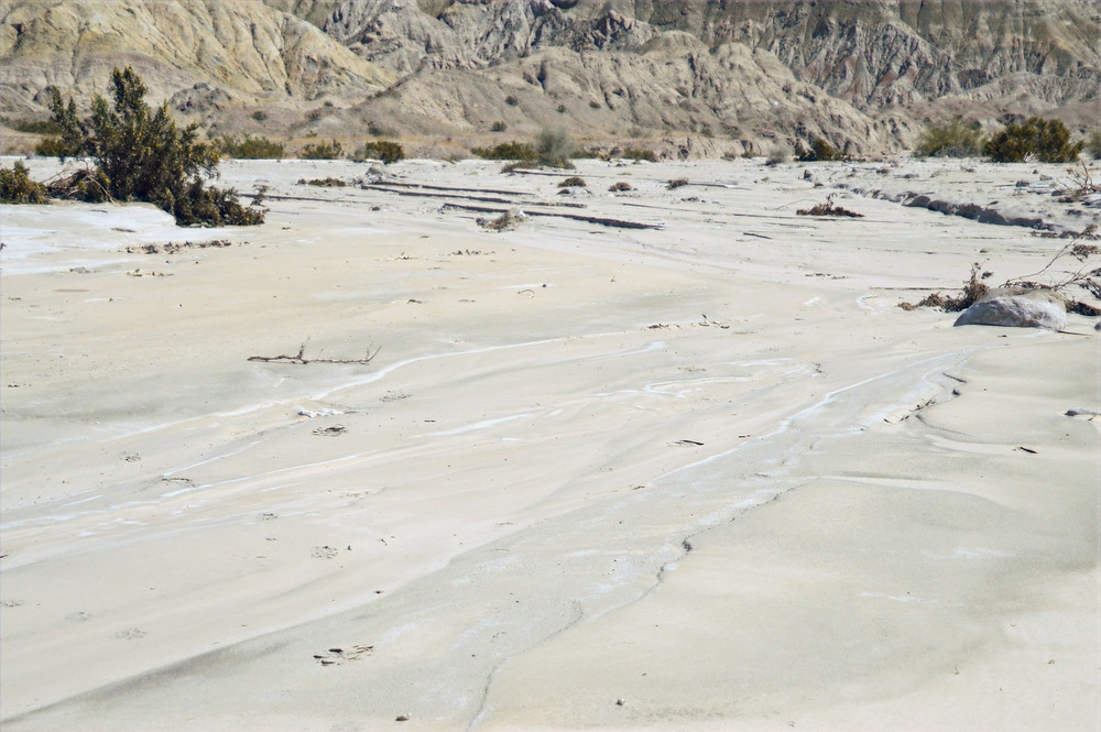 Dried mud from recent rains in Mecca Hills