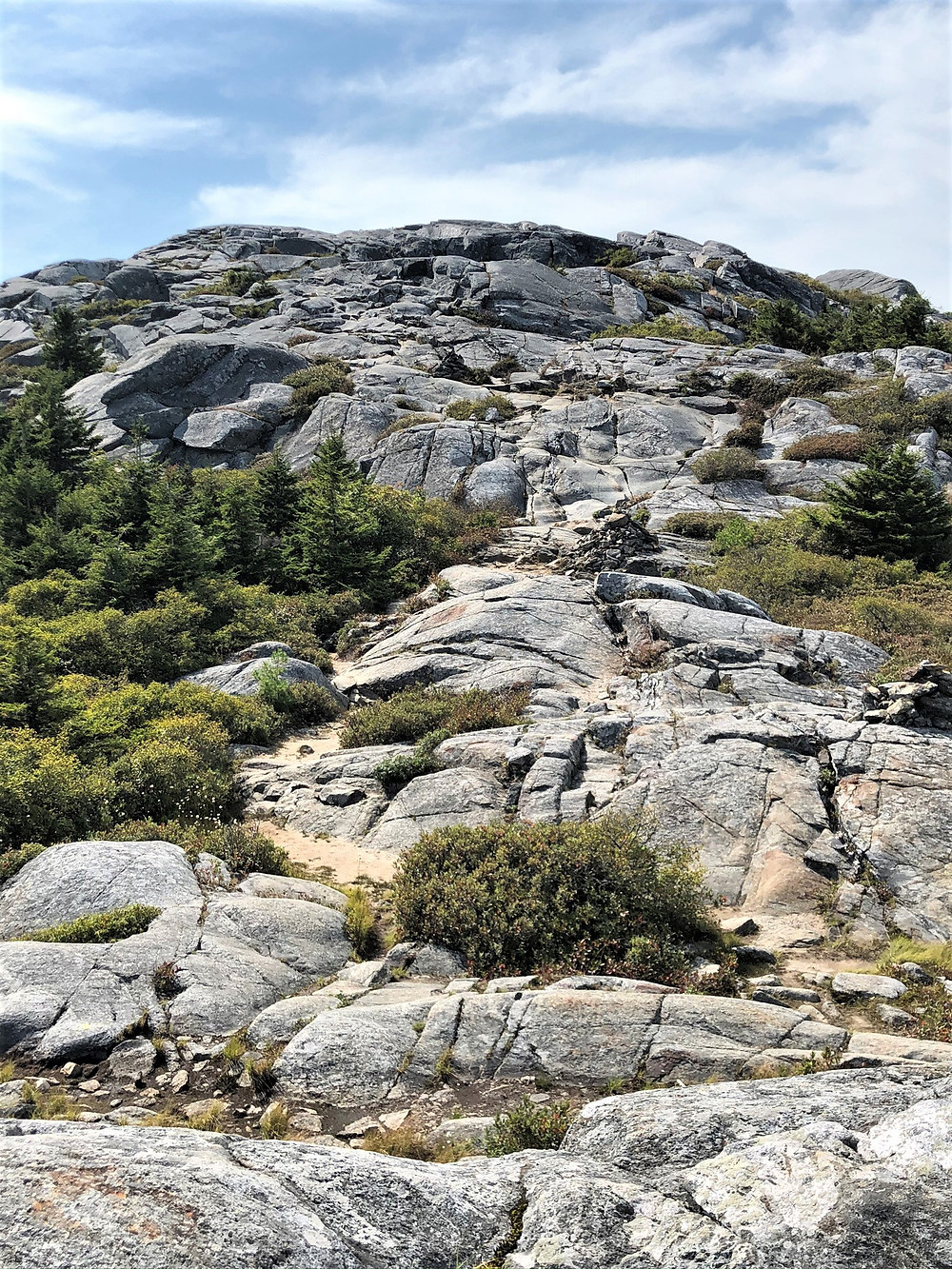 Final stretch of Pumpelly Trail leading to Mount Monadnock summit