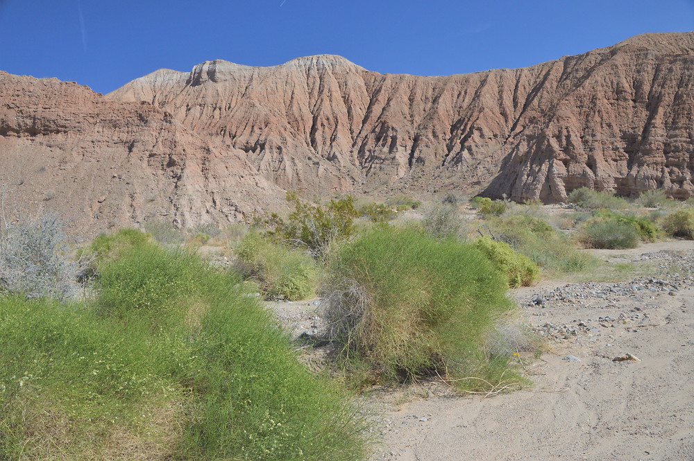 Mecca Hills topped with red Mecca Conglomerate layers uplifted by San Andreas fault activity