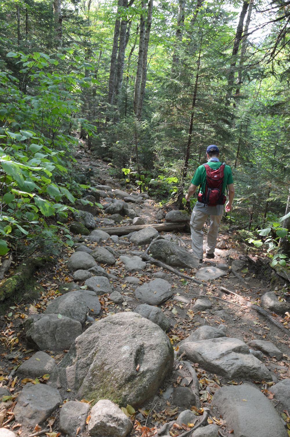 Eroded and rock covered Crawford Path from Mt Eisenhower