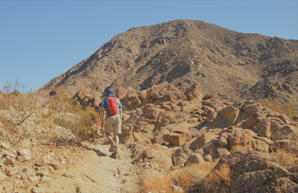 At 1,952 ft, Eisenhower Mountain in the Santa Rosa Mountains loomed in front of us as we climbed higher