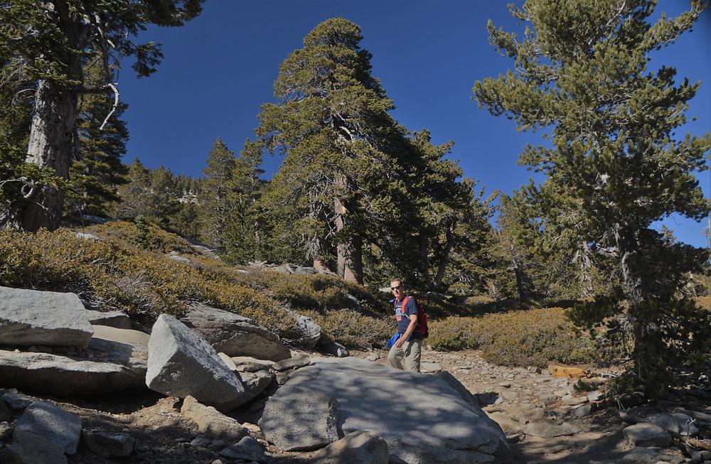 Steady uphill climb to the San Jacinto summit