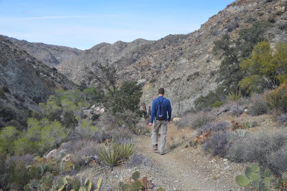 Hiking down Horsethief Creek ravine in the Santa Rosa Wilderness