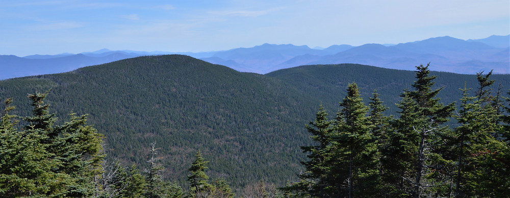 Franconia Range and the Presidential Range furthest away on the Gorge Trail to Mt Moosilauke summit. NH 4000 footer