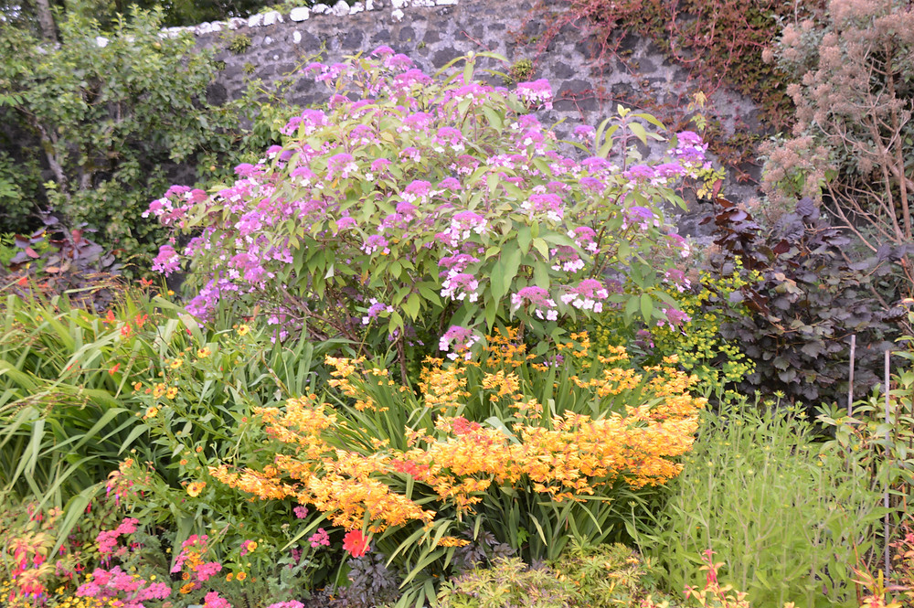 Surrounding Dunvegan Castle on the Isle of Skye are beautiful gardens