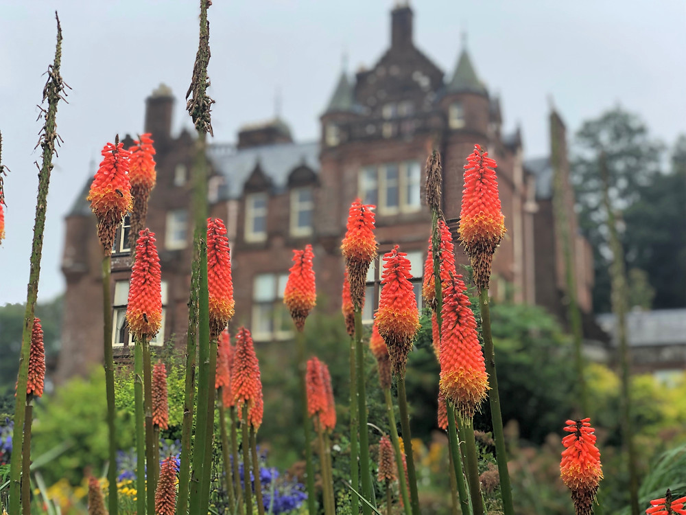 Beautiful flowers in the gardens on the grounds of Threave Estate and Gardens in Dumfries and Galloway Southern Scotland