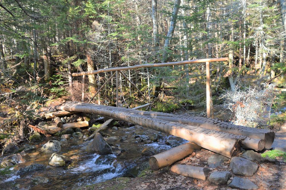The Gorge Brook trail cross the Gorge Brook on several rudimentary bridges