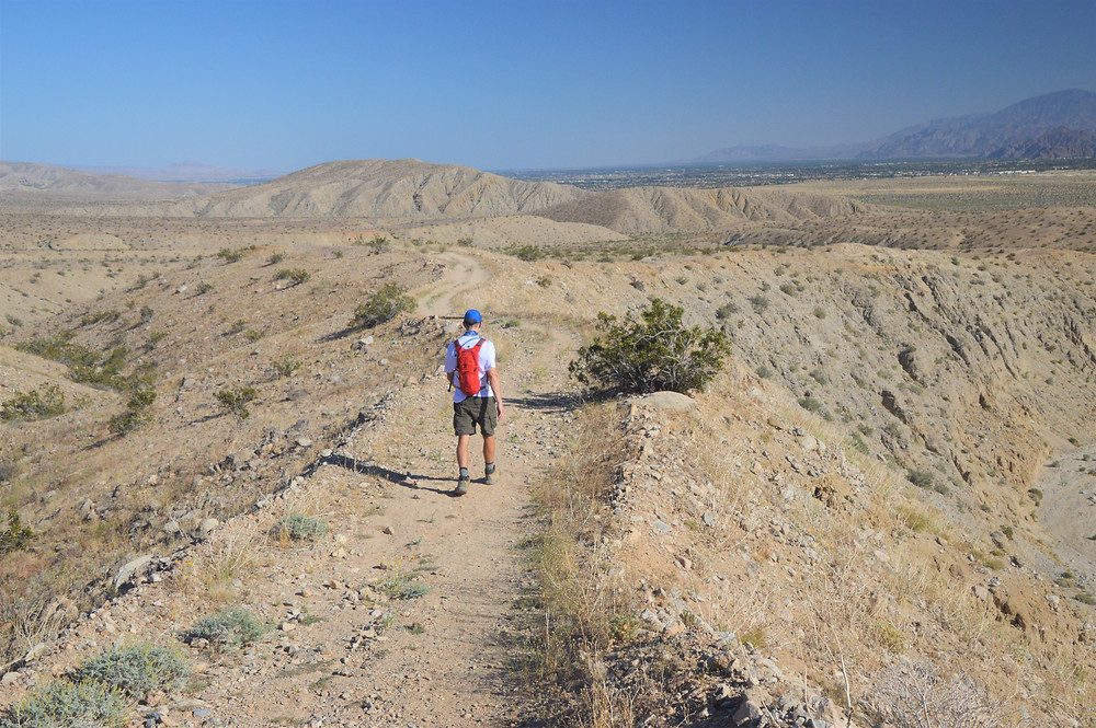 Hiking on West Mesa Trail to Willis Palm grove