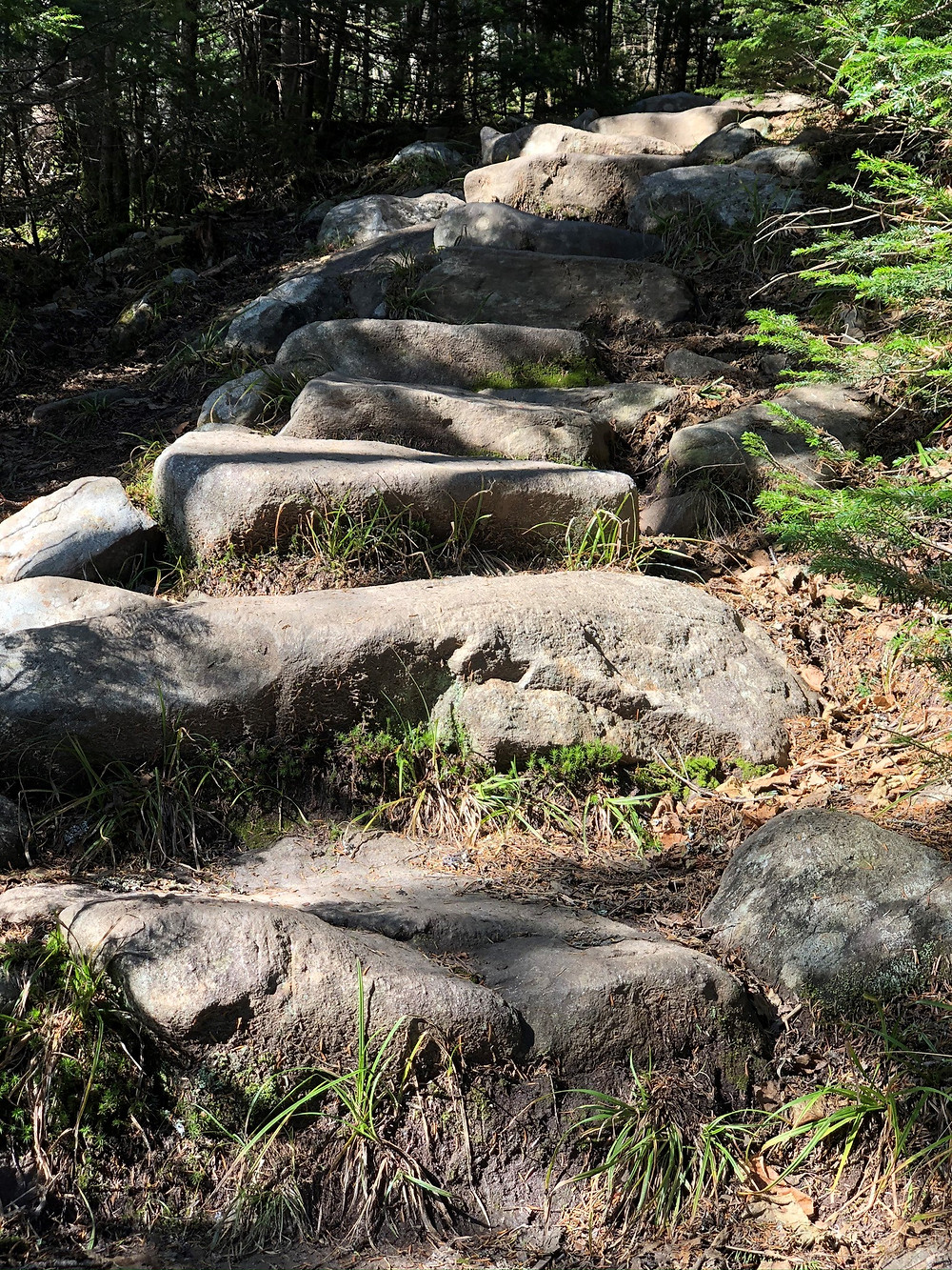 Rock stairs along the Gorge Brook trail leading to the Mt Moosilauke summit in NH. NH 4000 footer