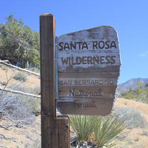 Hike Cactus Spring Trail: Mar 2020