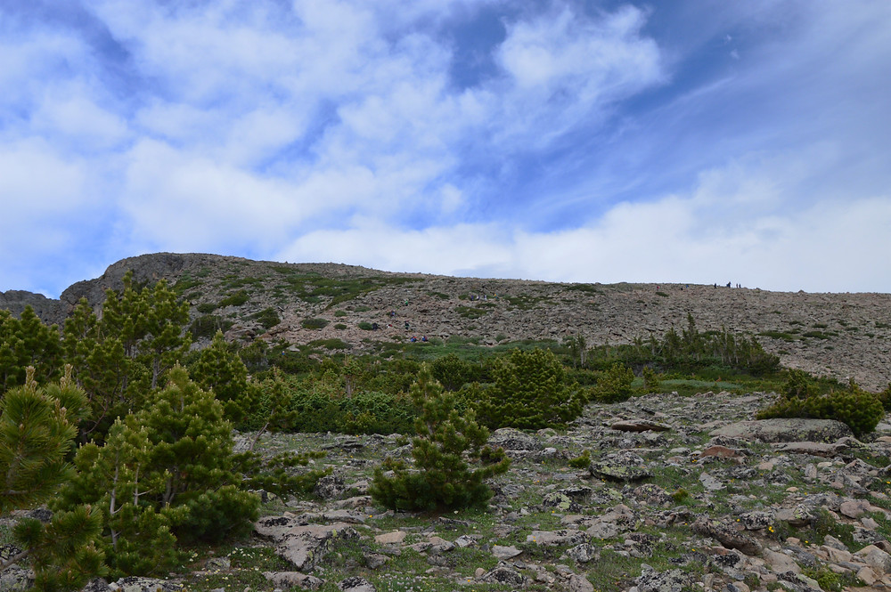 Hiking the exposed alpine environment on the trail to Flattop Mountain in Rocky Mountain National Park