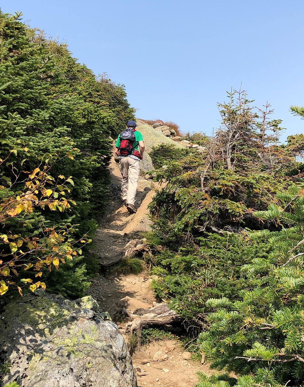Climbing rocky crag on Mt Eisenhower Loop Trail