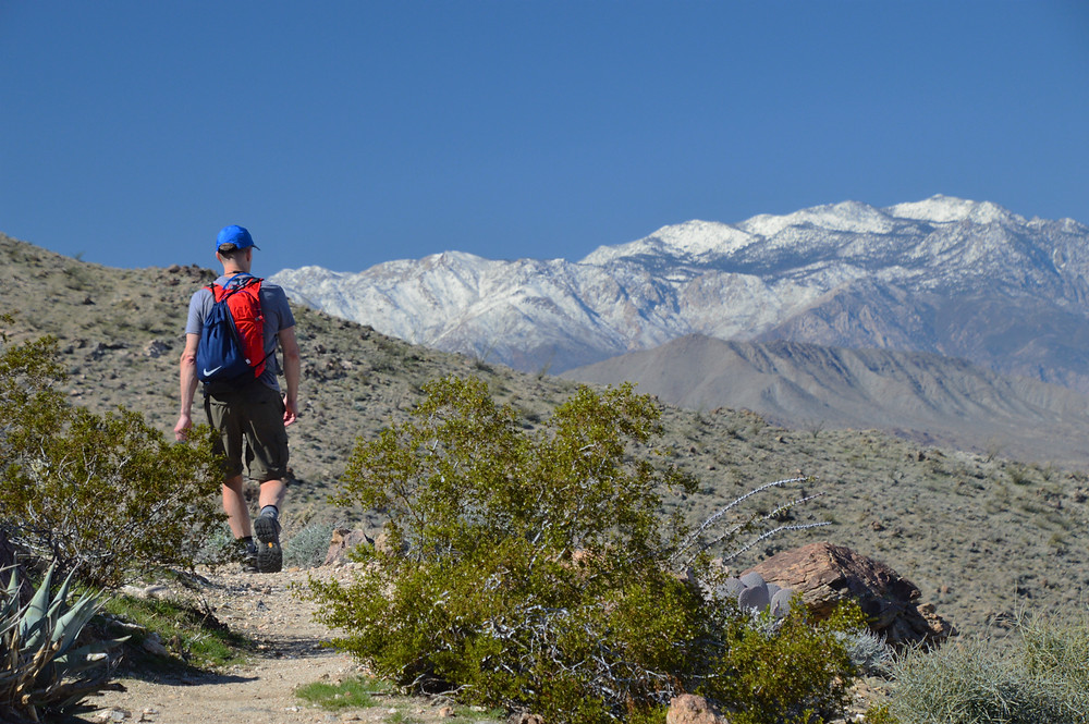 Snow-covered San Jacinto Mountains from the Bear Creek Oasis Trail