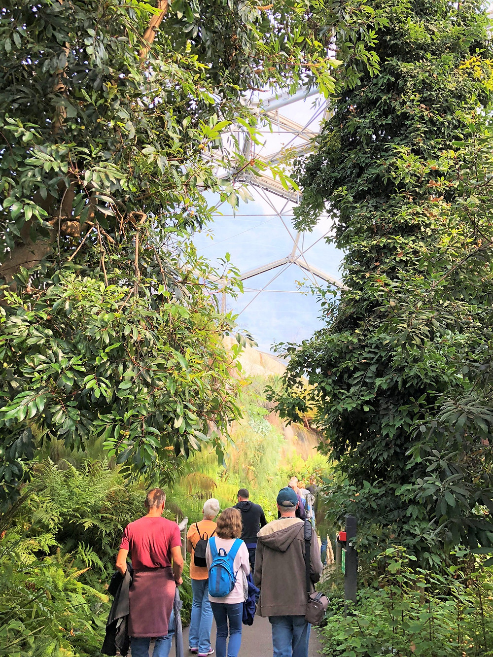 Looking up at the top of the Mediterranean Biome is home to over 1,300 different plant species from California, South Africa and Western Australia
