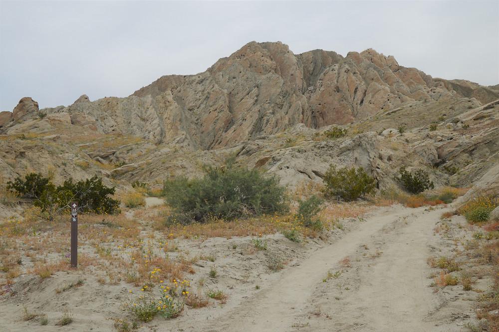 Badlands terrain, erosion of folded sedimentary rock layers, tortured rock formations