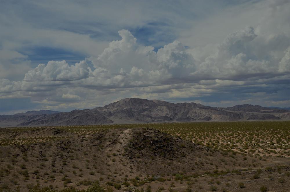 Pinto Mountain from Black Eagle Mine Rd Trail Joshua Tree National Park