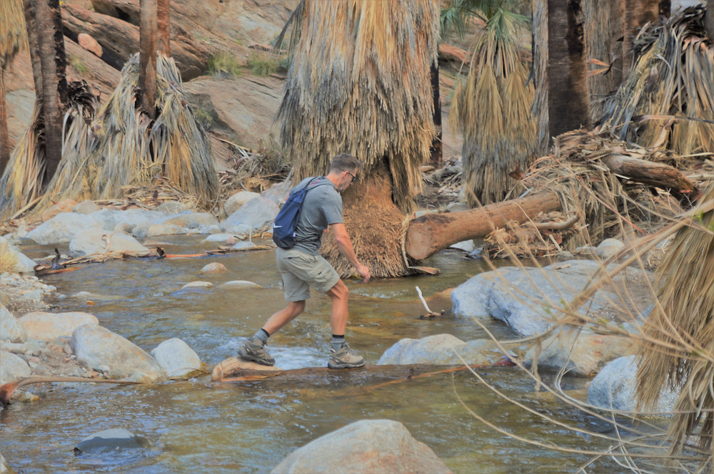 Careful balance at water crossing along the Murray Canyon trail in Agua Caliente Reservation