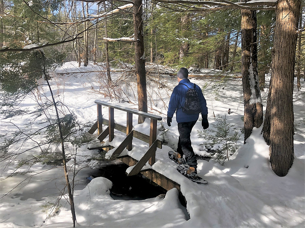 Crossing stream while Snowshoeing at Beaver Brook Conservation Lands in Hollis New Hampshire