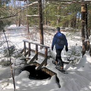 Snowshoeing In Beaver Brook, NH: Feb 2021
