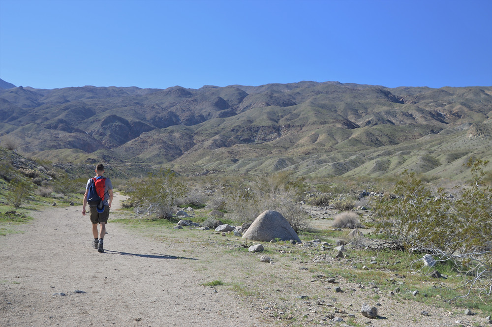 Following a wash at the start of the Bear Creek Oasis Trail in La Quinta Cove