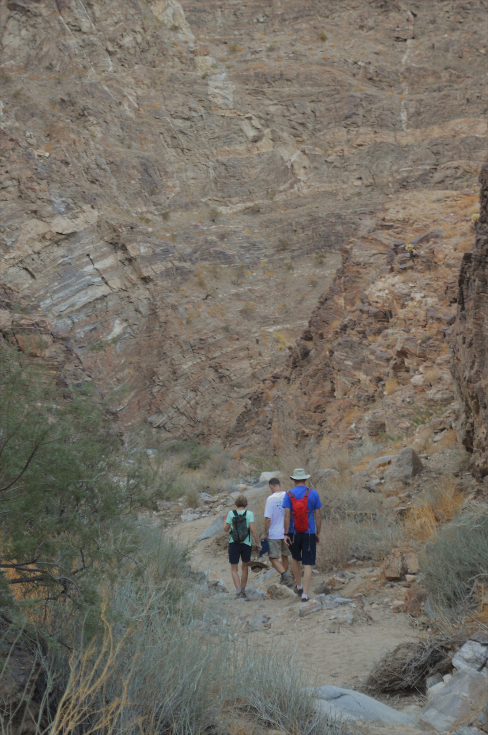 Hiking Carrizzo Canyon in the Santa Rosa Mountains in Palm Desert CA