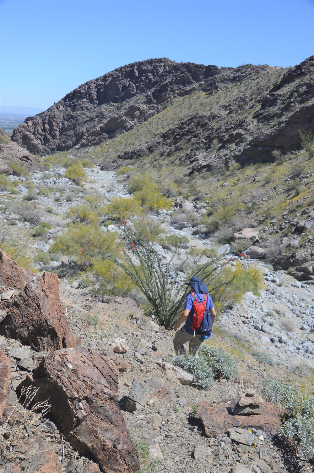 Hiking in Lost Canyon of the Santa Rosa Mountains