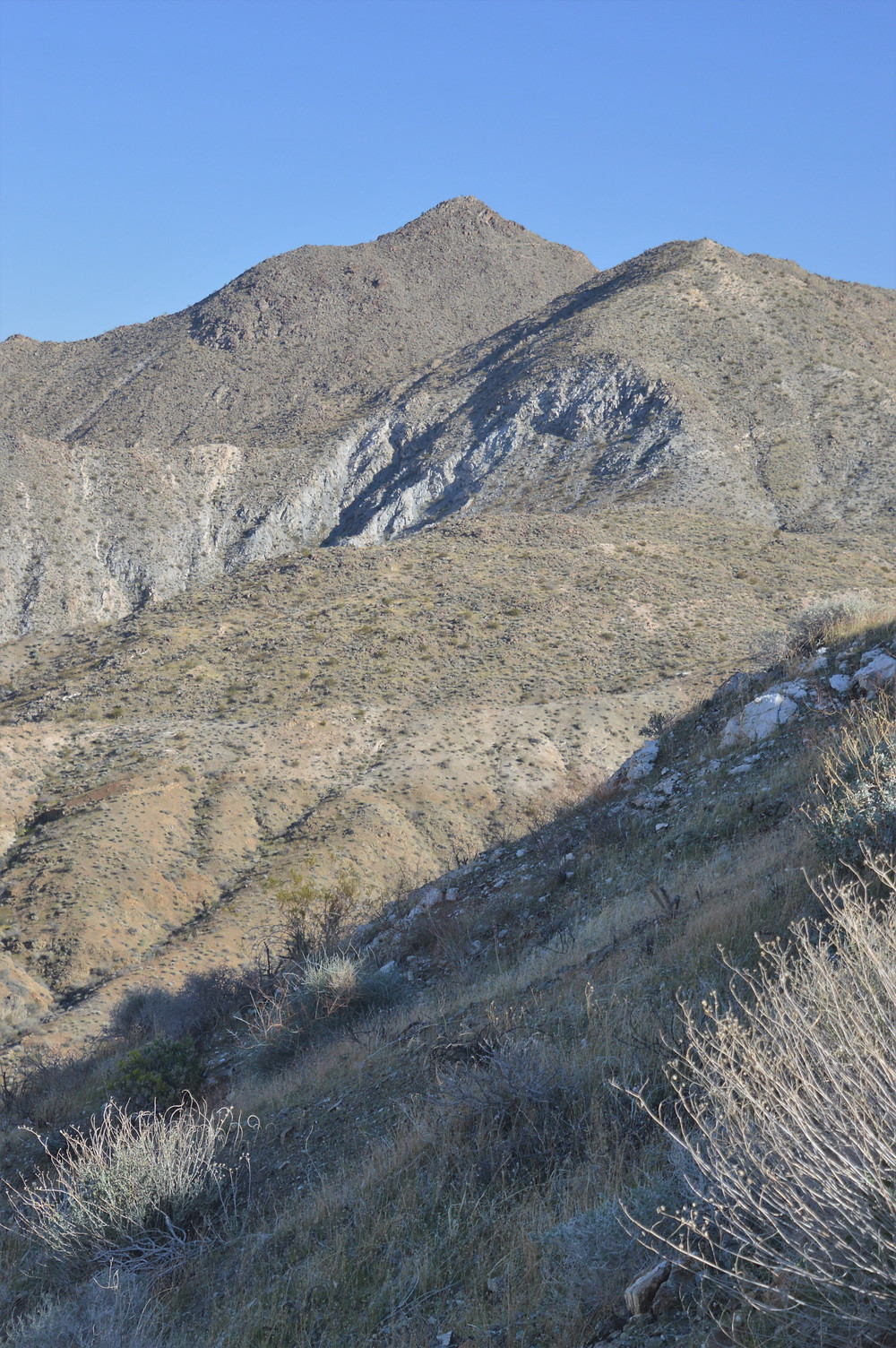 Peak of Murray Hill from the trail back to Palm Springs