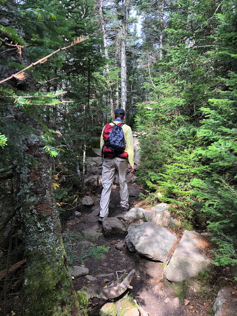 Falling Water Trail in White Mountains of NH