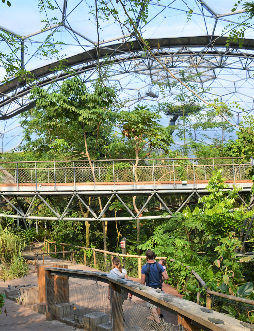 The Rainforest Canopy Walkway in the Rainforest Biome in the Eden Project in Cornwall, England