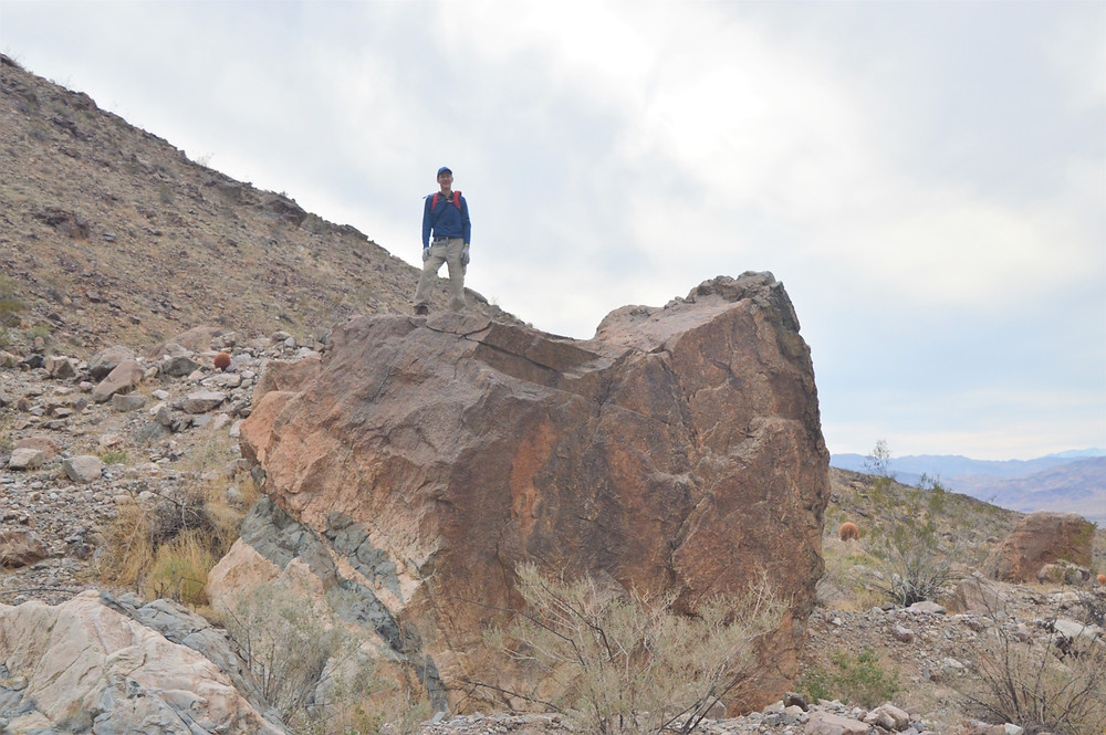 Standing on huge boulder at base of Pinto Mountains