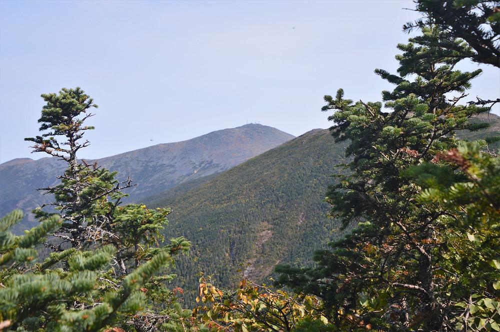 Mt Washington from Edmands path to Mt Eisenhower