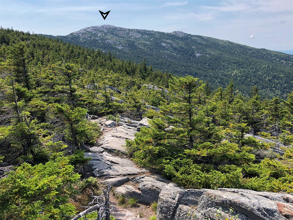Mount Monadnock summit from Pumpelly Trail