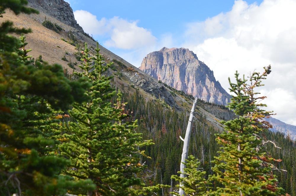Scenic point hike trail Glacier national park