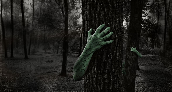 Forest-with-hands-modified.jpg