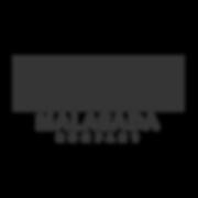 Logo_store_asset.png