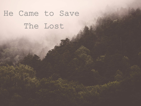 Save the Lost