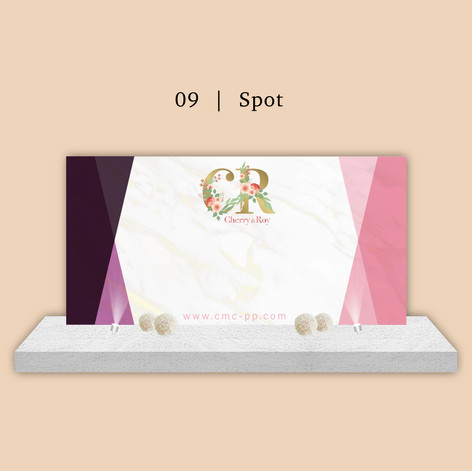 CMC-BAckdrop 09 spot.jpg