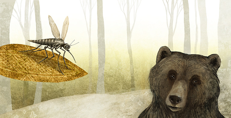 The Mosquito and The Bear.jpg