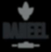 logo_deneel.png