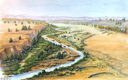 Whychus Creek Restoration