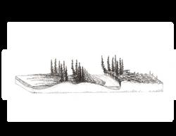 Subarctic Floodplains