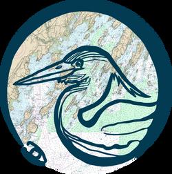 Bird's Eye Maine