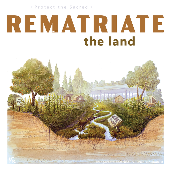 rematriate the land, remothering the land, rematriation