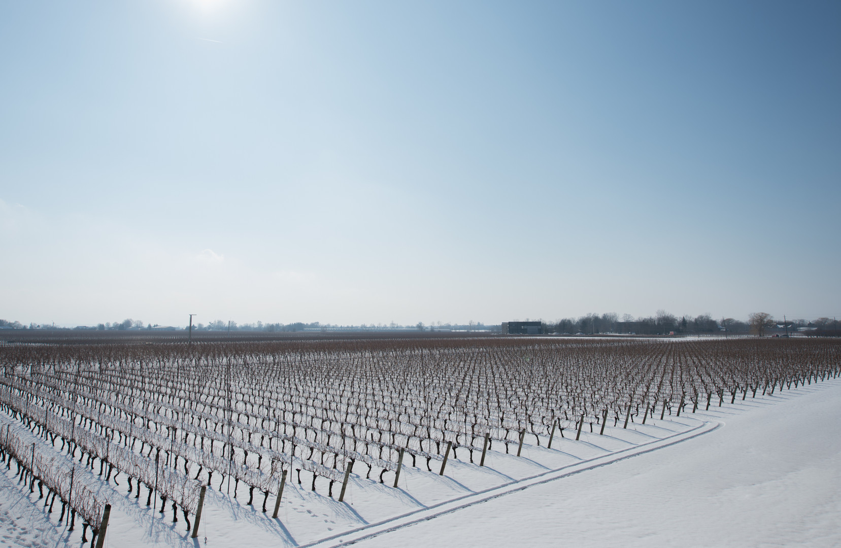 Winery In Winter