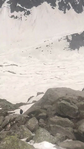 Another video taken while descending the Hampta Pass!