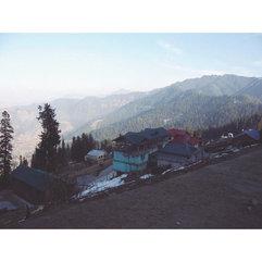 Shimla 🌲