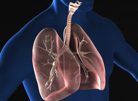 秋は肺の病気に注意しましょう