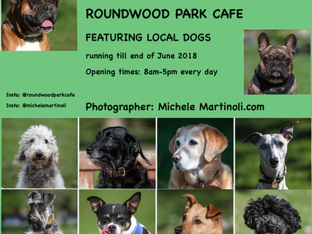 DOG PORTRAIT EXHIBITION-ROUNDWOOD CAFE- EXTENDED DUE TO POPULAR DEMAND