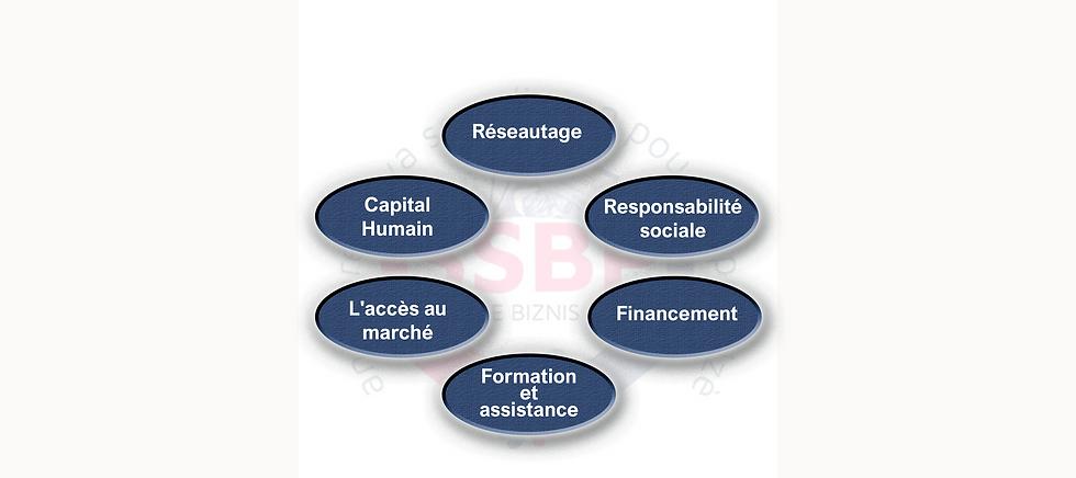 L'ecosysteme de SSBP site.png