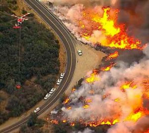 Free Offer of Help for Pets Experiencing the California Wildfires